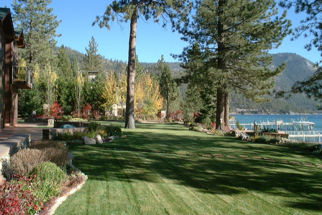 Lakefront Landscape