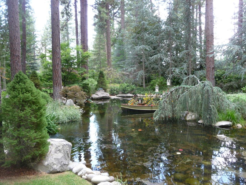 Lakefront Pond